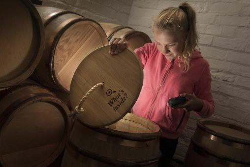 Looking into a barrel