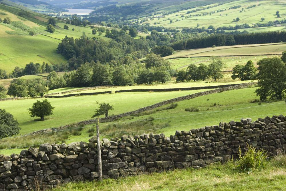 The Nidderdale Way