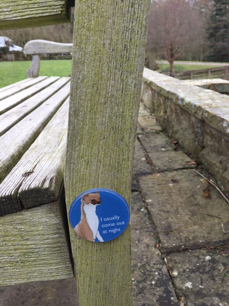 Sammy the Stoat appears on benches around the site, for younger visitors to find